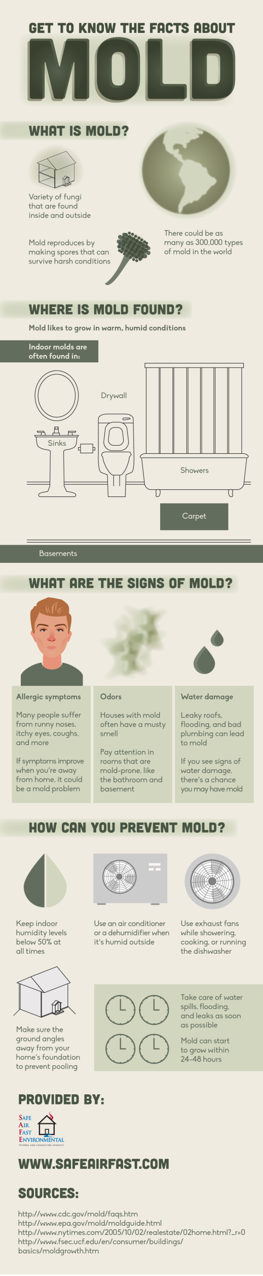 All About Mold Infographic