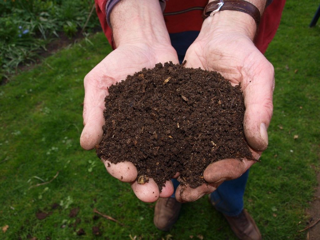 fresh healthy soil